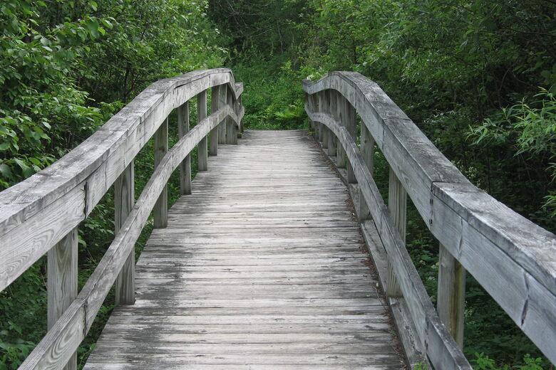 Robert Frost Interpretive Trail