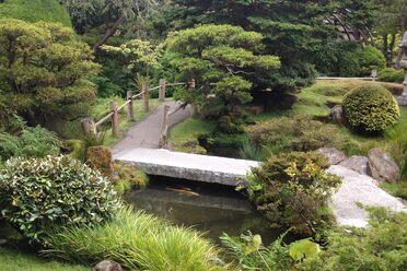 Images Gardens alnwick poison gardens – alnwick, england - atlas obscura