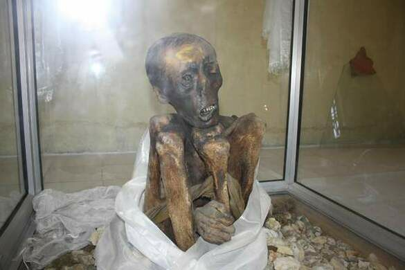 Image result for mummy of sangha tenzin
