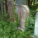 Overgrown headstones at the Unitarian Cemetery.