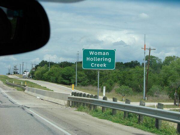 Womanholleringsign