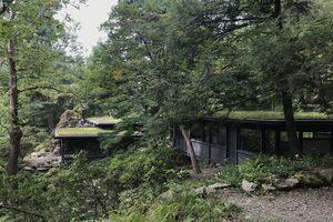 Roof moss gardens.
