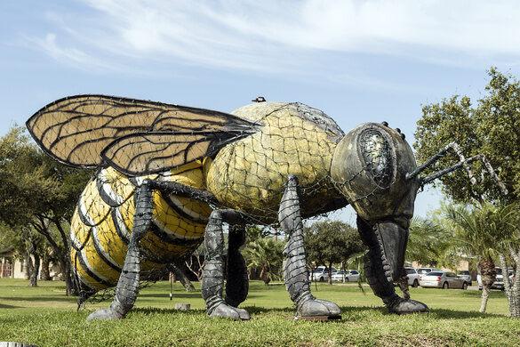 world s largest killer bee hidalgo texas atlas obscura