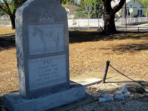 Grave of Pat the Horse – San Antonio, Texas - Atlas Obscura