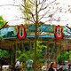 Tivoli carousel.
