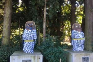 Tanuki statues