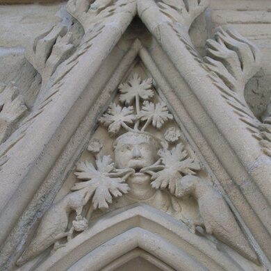 The Leaves of Southwell