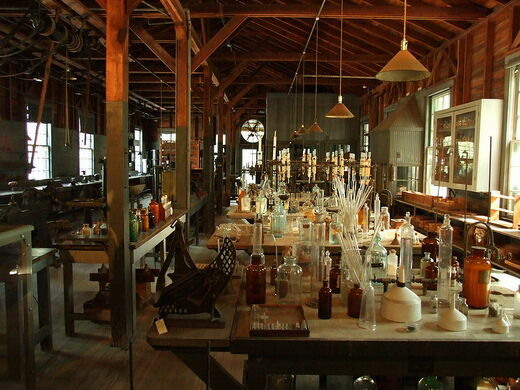 Image result for Edison and Ford Winter Estates
