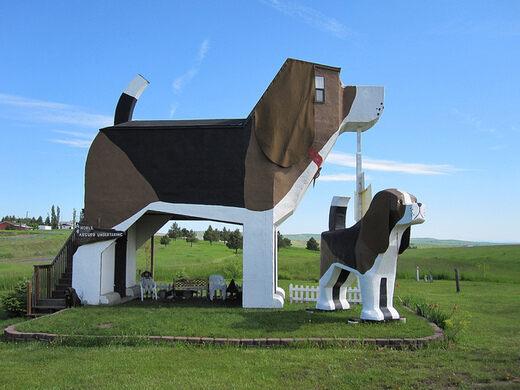Dog Bark Park Inn. Share This. Jacob Feuer (Creative Commons). View All  Photos