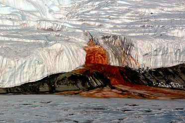 Cool And Unusual Things To Do In Antarctica Atlas Obscura - 12 things to see and do in antarctica