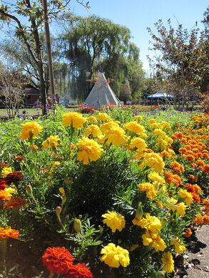 Flowers In The Gardens (Flickr/Пероша)  Http://www.flickr.com/photos/peroshenka/50... (Creative Commons)