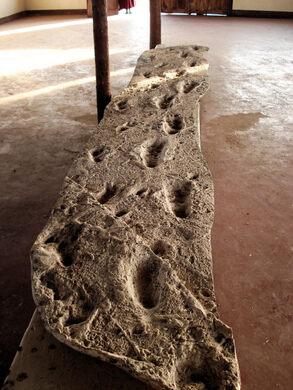 Laetoli Footprints Ngorongoro Tanzania Atlas Obscura