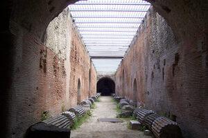 The Flavian Amphitheater