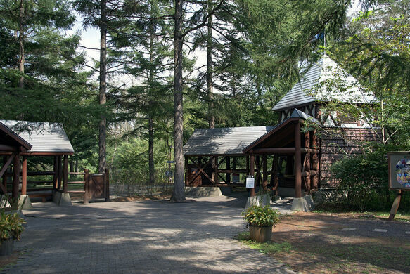 Karuizawa Picture Book Forest Museum