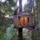 Treehouse Point.