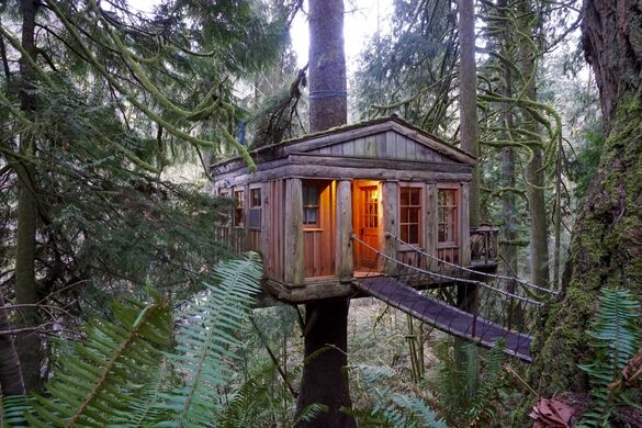 Treehouse Point Issaquah Washington Atlas Obscura