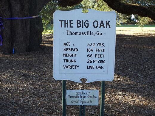 Big oak wolf sanctuary