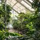 Brooklyn Botanic Garden.