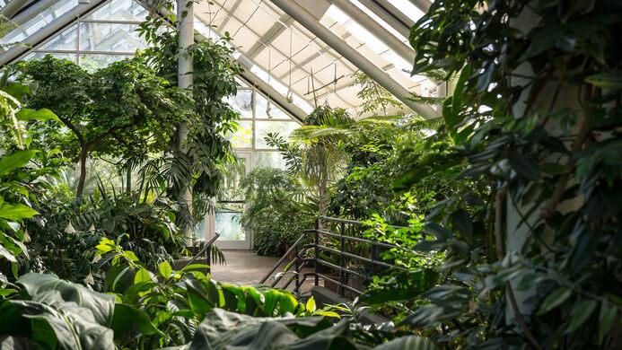 Brooklyn Botanic Garden – Brooklyn, New York - Atlas Obscura