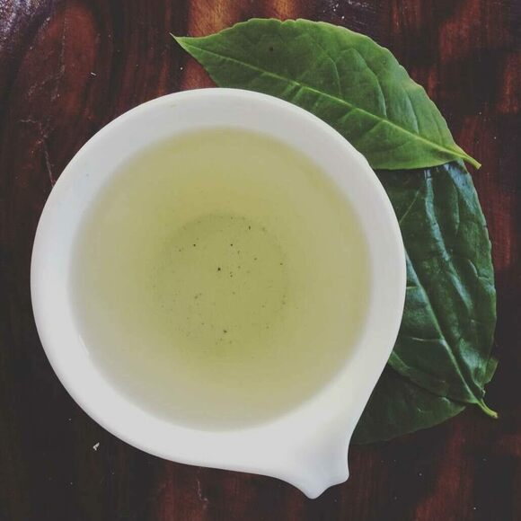 Guayusa tea with leaves.