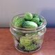 A jar of cucamelons, ready to be brined into pickles.
