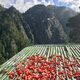 Chili peppers laying out on a rooftop to dry, with Tiger's Nest in the background.