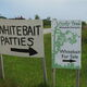 "Follow the signs. The fritters are also known as ""whitebait patties."""