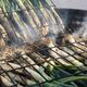 Calcots are grilled to a char, then steamed in newspaper bundles.