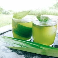 Fresh-pressed pandan leaf adds a limey glow to this refresher.