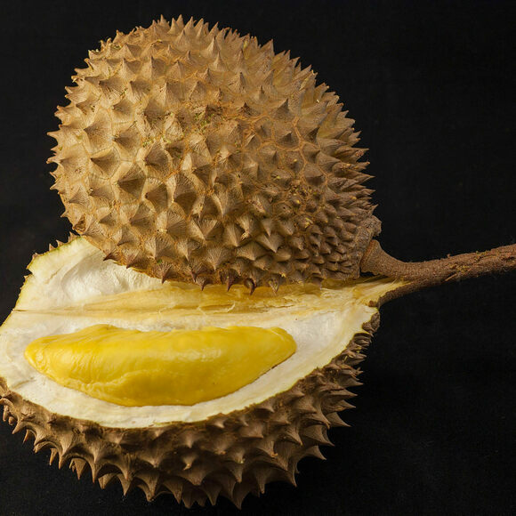 The edible contents of the durian have been compared to custard.