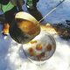 Boiling maple syrup being turned into sugar on snow.