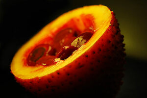 A bisected gac fruit.