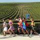 Running past vineyards.