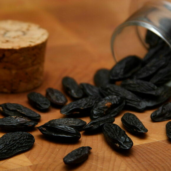 Tonka beans look a bit like raisins.