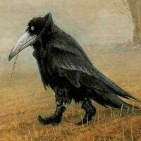 Profile image for HallowedCrow