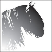 Profile image for spookhorse01