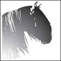 Profile image for spookhorse01