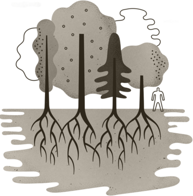 Illustration of a group of trees showing their roots extending into the ground.